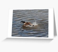 Speed Boat Greeting Card