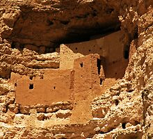Montezuma's Castle National Monument by Karin  Hildebrand Lau
