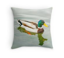 Mallard - Drake Throw Pillow