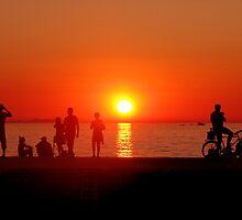 Sun Trust by Olivera Jelaca Bartoli