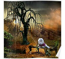 Snowdrop the Maltese at the Lake Poster