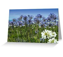 Blue, White, and Ocean Greeting Card