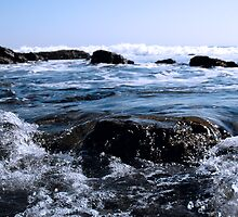 Pacific Rocks by Karin  Hildebrand Lau