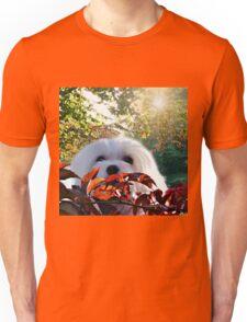 Snowdrop the Maltese - Autumn Light Unisex T-Shirt