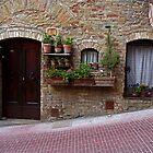 Street in San Gimignano, Tuscany, Italy by al holliday