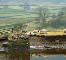 Reeth Swingbridge, Swaledale, 2001 by Steve Arkleton