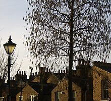 Raining leaves and chimneys by James  Dedman