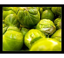 Sprouts Photographic Print