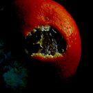 Orange2# by Clare Bentham