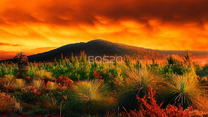 Fire In The Sky  by EOS20