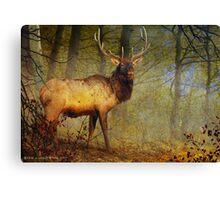 aspen forest bull elk Canvas Print