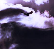 Armageddon by Jan Cartwright