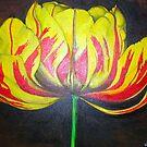 Blazing Tulip by jomash
