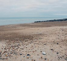 shoreham beach by westie71