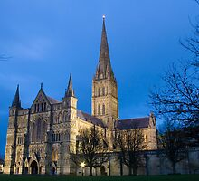 Salisbury cathedral  by tamilian