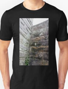 HDR Composite - Granite Wall and Lichen T-Shirt