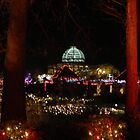 Lewis Ginter Botanical Garden - Richmond by ctheworld