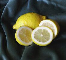 Lemon Slice by BizziLizzy
