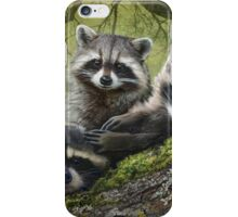 baby raccoons on forest log iPhone Case/Skin