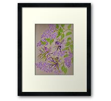 french lilacs Framed Print