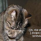 Forgotten Birthday by MDossat