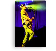 The Dandy Warhols Canvas Print