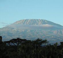 Mount Kilimandjaro! by David H