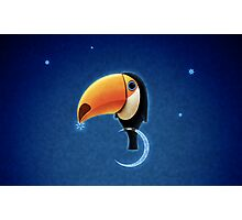 Toucan Photographic Print