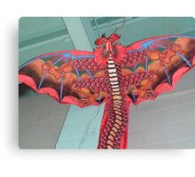 Here be dragons. Canvas Print