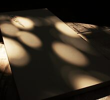 shadows on canvas by spike