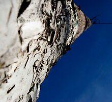 telephone pole by prescott mccarthy