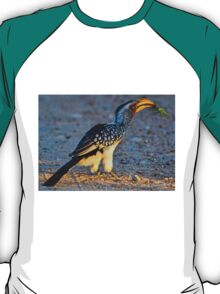 Yellow-Billed Hornbill with Lunch (Tockus leucomelas) T-Shirt