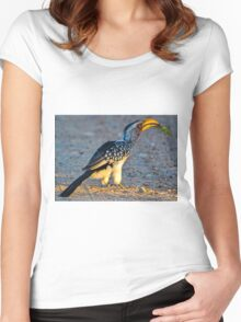Yellow-Billed Hornbill with Lunch (Tockus leucomelas) Women's Fitted Scoop T-Shirt