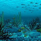 Tuna Reef by Walter Colvin