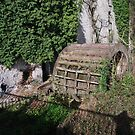 A  MILL WHEEL by TIMKIELY