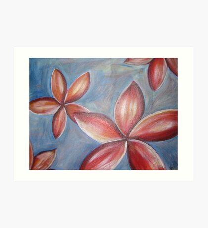 Floating frangipanis Art Print