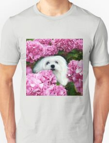 Snowdrop the Maltese - Cheeky Face ! T-Shirt