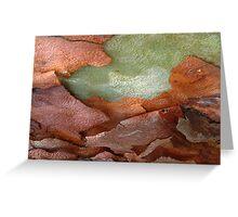 bark beauty abstract Greeting Card