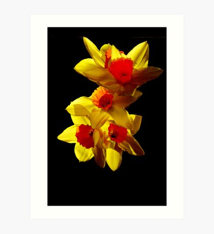 Abstract Daffodils Art Print