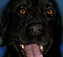 Black Lab by Deb Reynolds