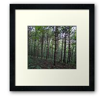 HDR Composite - Hillside and Trees Framed Print