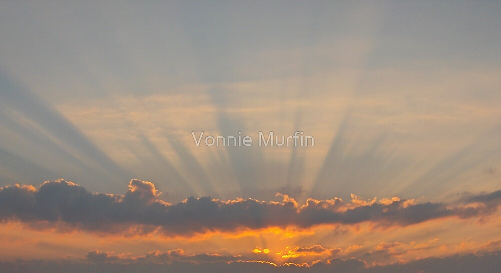 Beautiful Sunrise by Vonnie Murfin