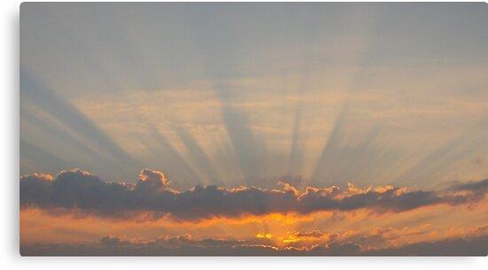 Beautiful Sunrise by Vonnie Murfin