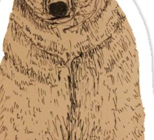 Cool Bear Sticker
