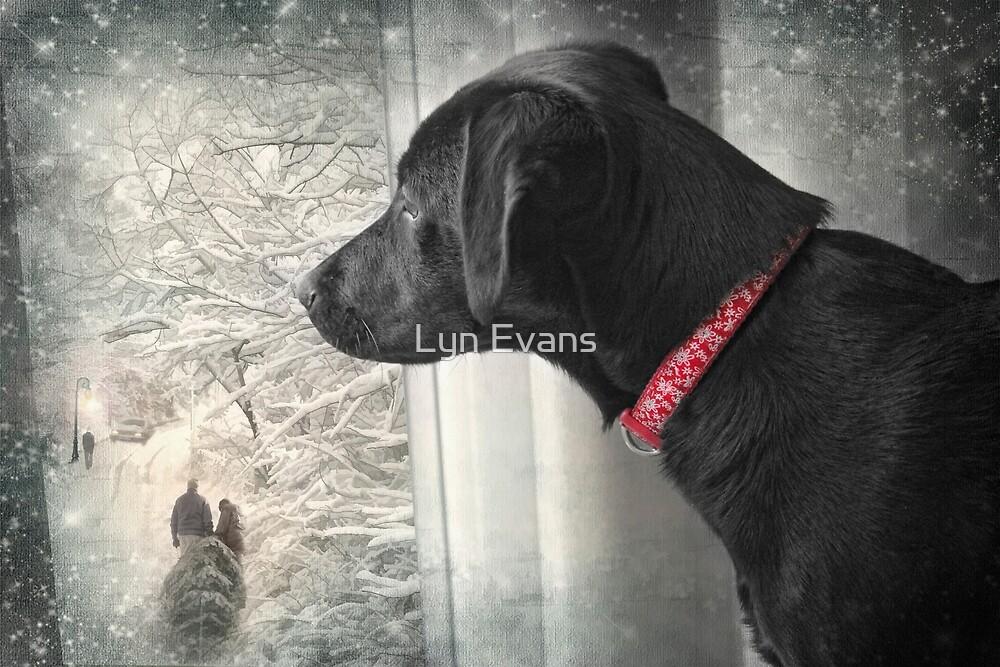 Dear Santa..... by Lyn Evans