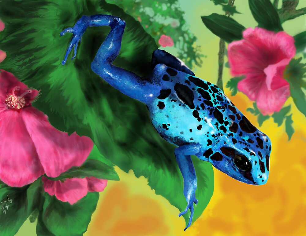 Blue Poison Blush by Paramo