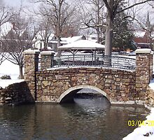 this is the love bridge at the park by misty  arnold