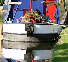 English Canal by conradhoe