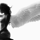 My angel by Lestat