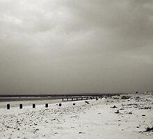 Empty Beach by Tez Watson
